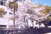 兵庫県立尼崎高等学校