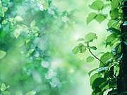 環境ビジネス&エコビジネス情報