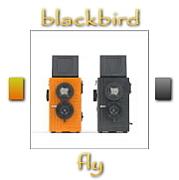 [BBF]blackbird,fly[ニ眼トイ]