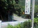 南島中学校前のstoptree!!
