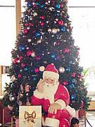 サンタクロースを信じてる