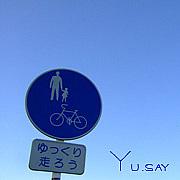 Yu.say