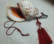法螺貝、和の響き