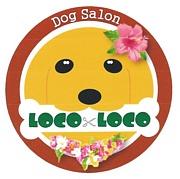 ドッグサロン LOCO×LOCO