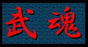 大阪経済大学体育会合氣道部