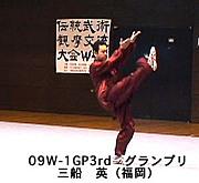 伝統武術観摩交流大会 W-1GP