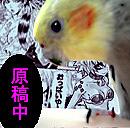 オタク・腐女子ですが鳥好きです