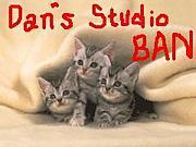 Dan's Studio Ban