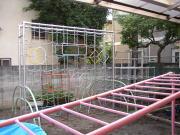 三軒茶屋幼稚園