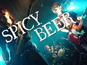 SPICY BEER