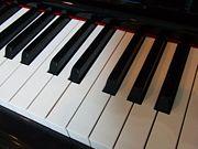 ピアノ 〜鍵盤楽器Piano〜