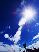 夏の太陽が大嫌い!!!