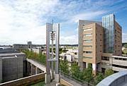 城西国際大学国際人文学部