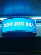 ZOO ZOO SEA