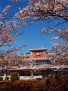大分県立佐伯鶴岡高等学校