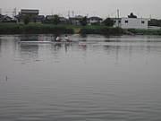 館林(群馬)のボート's ルーム