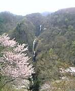 長野県高山村