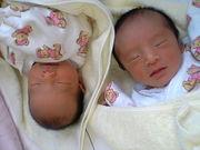 2006年生まれ双子ちゃん兄妹4人