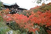 京都の穴場