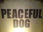 ★PEACEFUL DOG★