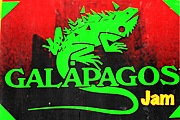 ◆GALAPAGOS JAM◆