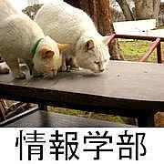 長崎総合科学大学@情報学部