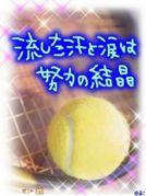 南高♡テニス部