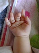 *:2008年7月産まれのBaby・*