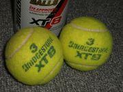 福岡県立京都高校テニス部