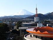東海大学★2012☆入学予定