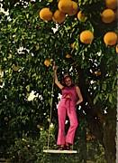 グレープフルーツ農家