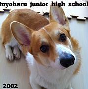 豊春中学校2002年卒業・55期生★