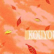 KOUYOU