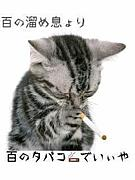 〜ほしがり屋〜