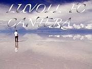 LUVOLL.FC CANTERA