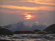 ダイビング天国 IN RDC八丈島