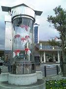 山口県柳井市