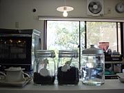 Horne  cafe