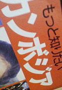 JAPFインターンシップ2009春