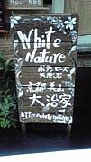 WhiteNature