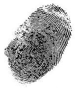 the fingerprints!!!!!