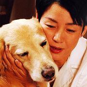 ディロン〜運命の犬