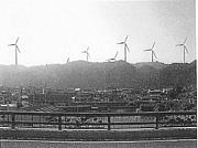 ストップ★千倉の巨大風車建設!