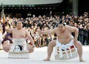 若い人のための相撲
