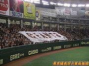 2011年巨人軍日本一への道
