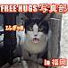 FREE HUGS 写真部 in 福岡
