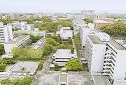 H19入学 阪大工学部応用自然科