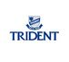 TRIDENT COLLEGE OF DESIGN