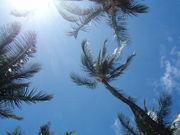 大好きハワイでリラックス♪