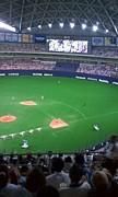 野球観戦サークル